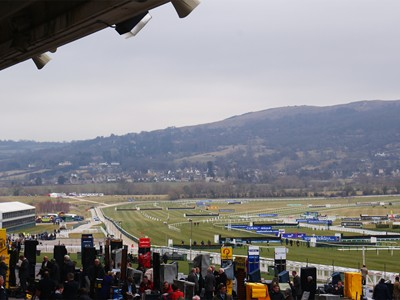 View of final furlong from Main Grandstand