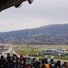 Why choose the Cheltenham Festival for VIP Hospitality