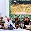 Wimbledon 2015: The Story So Far