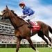 St Leger Festival - Doncaster Cup Day