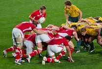 Wales v Australia - Autumn Rugby