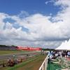 F1 British Grand Prix 2009