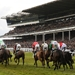 The Open - Paddy Power Gold Cup Day