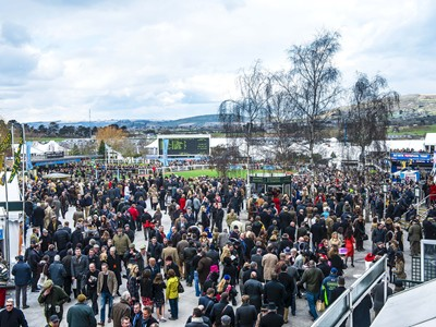 Experience the great atmosphere at Cheltenham Racecourse