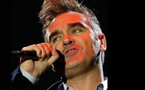Morrissey Hospitality Hospitality