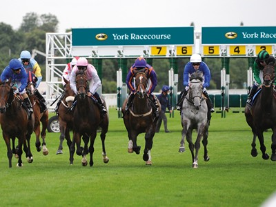 See the horse racing action live