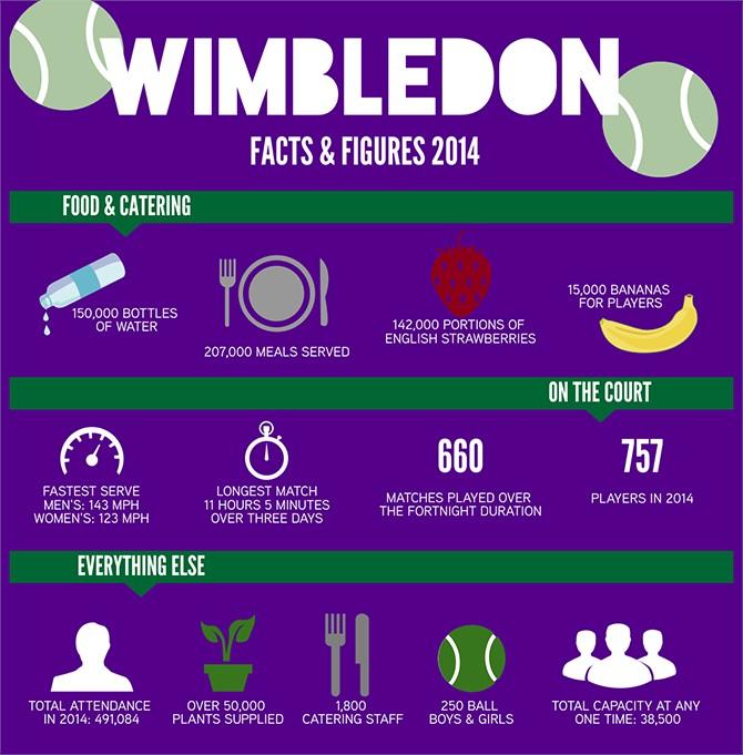 Wimbledon 2014 Infographic