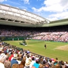 Murray through to Wimbledon Semi-Finals