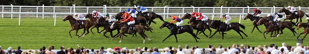 Goodwood Racecourse Hospitality
