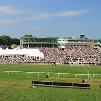 how to get to newcastle racecourse