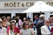 Moet & Chandon Festival - Gentleman's Day