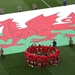 Wales v New Zealand - Autumn Rugby