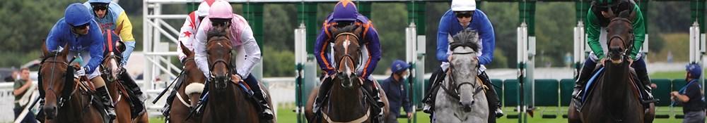 York Racecourse Hospitality