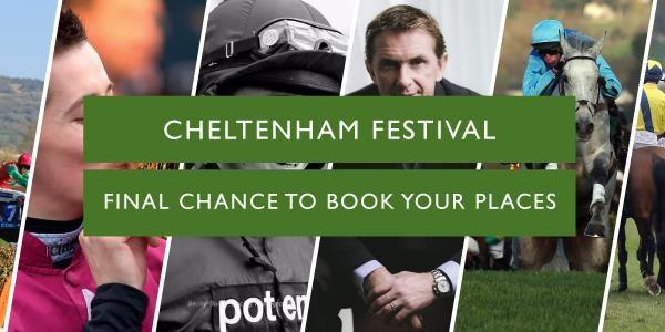 Cheltenham-final-chance