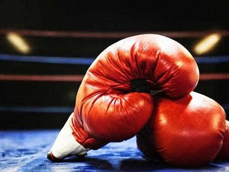 NEW Boxing Main