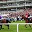 Horse Racing Hospitality News
