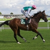 Frankel set to face seven rivals in the Ascot Champion Stakes