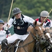 International Polo